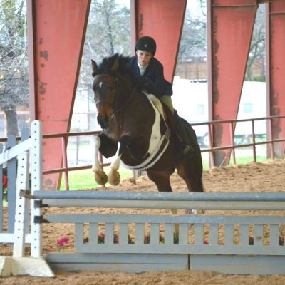 Bay and white paint horse jumps a grey fence in a covered arena and red beams in the background with rider in show clothes for Allison Sohmer