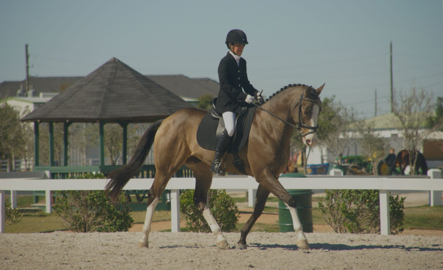 Banner of buckskin colored horse in dressage tack with rider in show attire in an outdoor warmup arena at a show