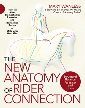 Cover of a book written by Mary Wanless with illustration of a horse and rider with colored lines running through for Mary Wanless Biomechanics Clinic