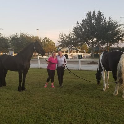 A black horse and a pinto horse graze on green grass on an afternoon at a show with two ladies one in pink shirt and one in white shirt for Contacts