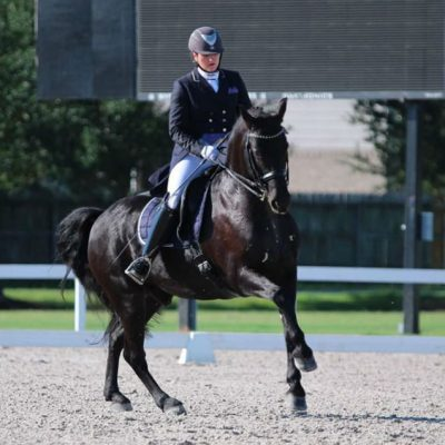 Black horse in outdoor show arena with rider in a navy show coat and white breeches on a sunny day for Katie McCullough