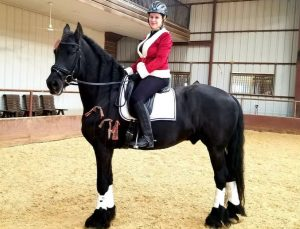 Black horse with long braids in his mane stands with a rider atop in a red and white Santa coat and black pants for Lease a Horse