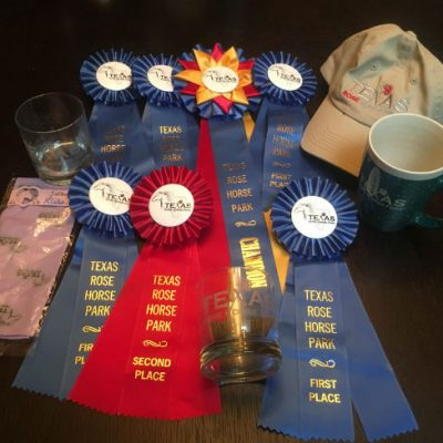 Champion ribbon with blue ribbons and one red ribbon after a very good show weekend. For training and lessons. Trainer Laura McEvoy.